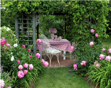 Backyard Mindfulness